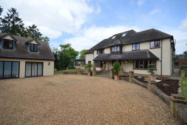 Thumbnail Detached house for sale in Sudborough, Kettering
