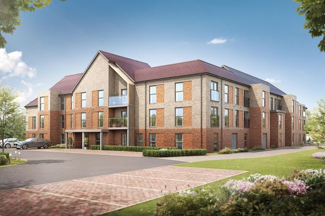 Thumbnail Property to rent in Kingsway, Stafford