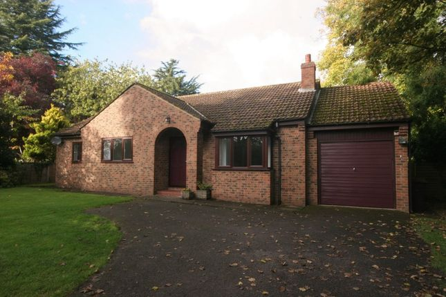 Thumbnail Detached house to rent in Peckfield, Ripon