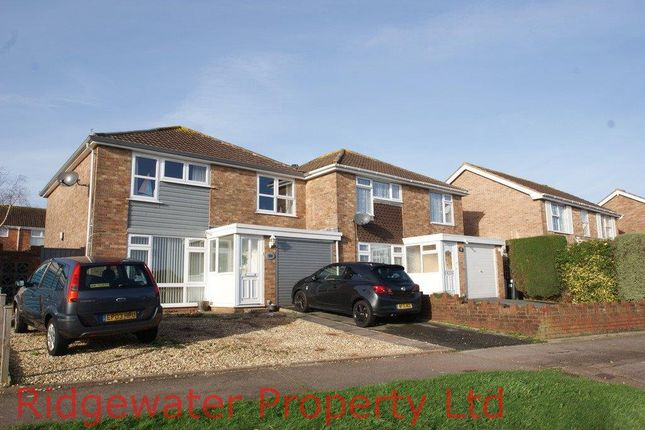 Thumbnail Semi-detached house to rent in Hookhills Road, Paignton