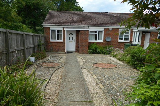 Thumbnail Bungalow to rent in Haydn Road, Brighton Hill