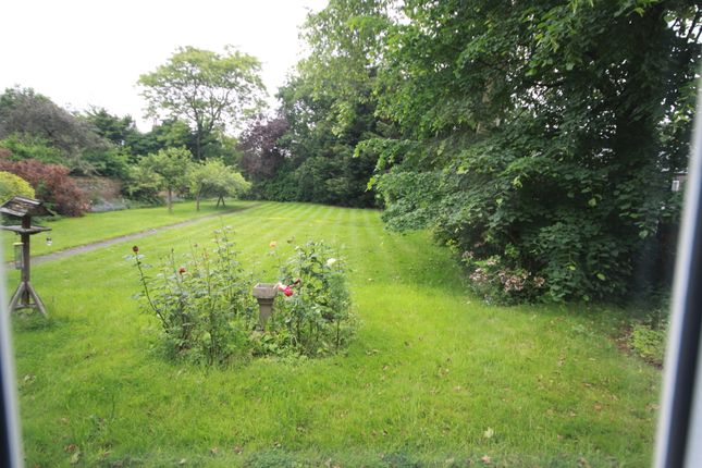Thumbnail Flat to rent in St Germans Place, Blackheath