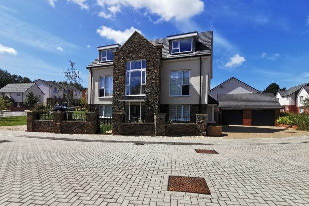 Thumbnail Detached house to rent in Clos Coed Collings, Swansea