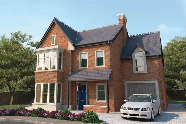 Thumbnail Detached house for sale in 6, Maple Hill, Belfast