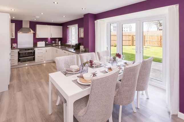 "Thumbnail Detached house for sale in ""Balmoral"" at Victoria Street, Monifieth, Dundee"