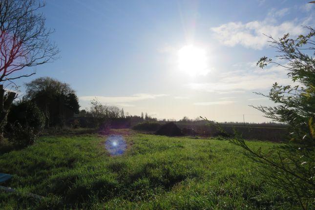 Marsh Road, Gedney Drove End, Spalding PE12