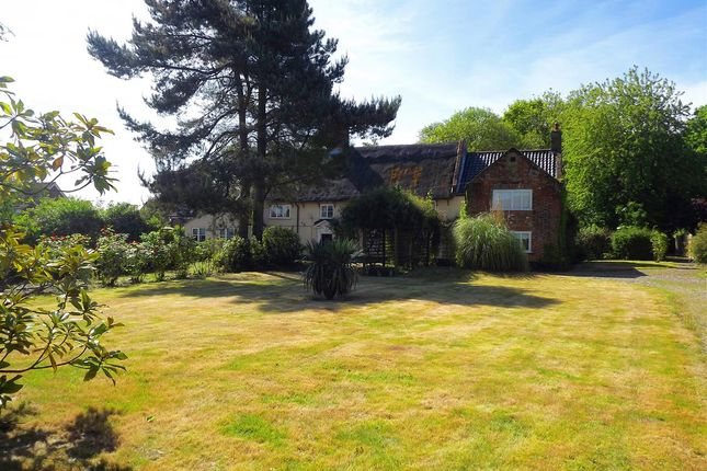 Thumbnail Farmhouse for sale in The Street, Halvergate, Norwich