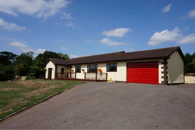 Thumbnail Detached bungalow for sale in Newton St Cyres, Crediton