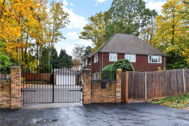 Thumbnail Detached house for sale in Iberian Way, Camberley, Surrey