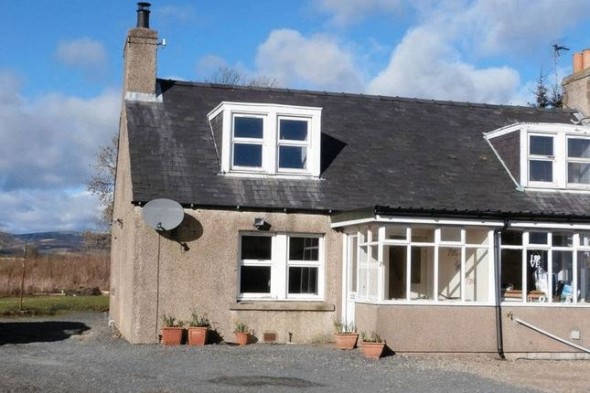Thumbnail Semi-detached house for sale in Laurencekirk