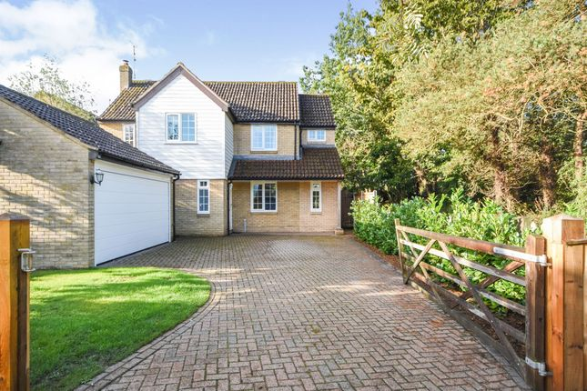 Thumbnail Detached house for sale in Riverside Way, Kelvedon, Colchester