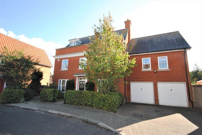 Thumbnail Detached house for sale in Chestnut Avenue, Great Notley, Braintree