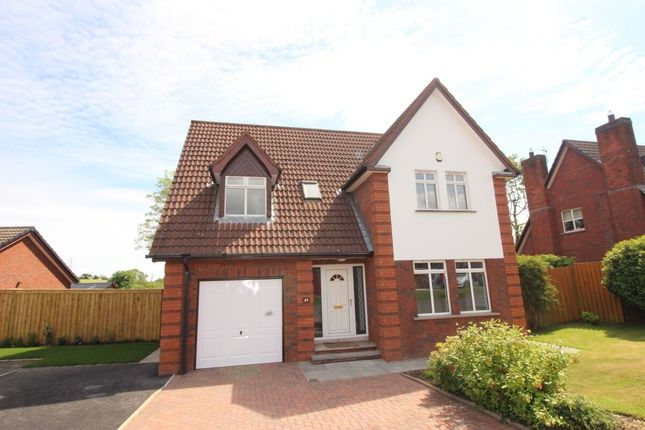 Thumbnail Detached house for sale in Mount Royal, Lisburn