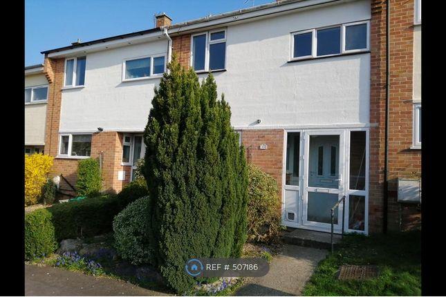 Thumbnail Terraced house to rent in Newbury, Newbury