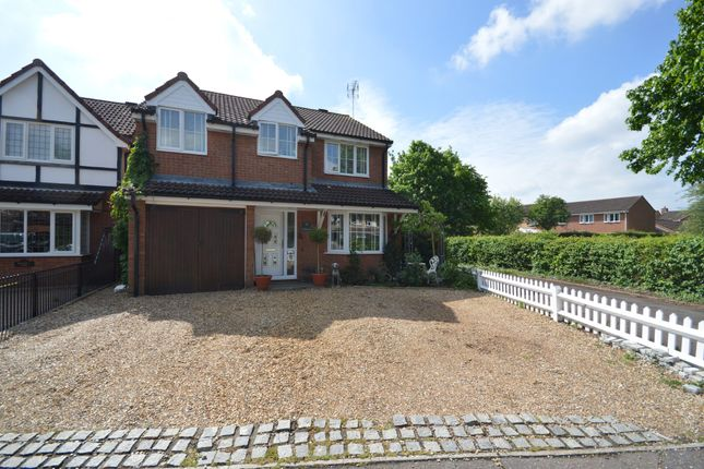 Thumbnail Detached house for sale in Scythe Way, Colchester