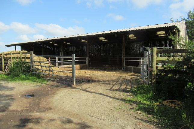 Land for sale in Thornbury, Holsworthy