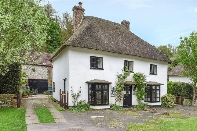 Thumbnail Detached house for sale in Milton Abbas, Blandford Forum, Dorset