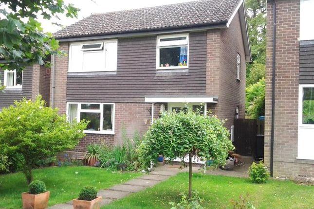 Thumbnail Property to rent in Moores Close, Debenham, Stowmarket