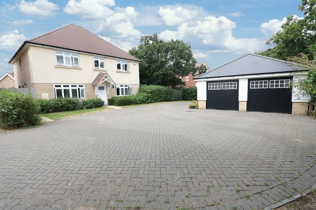 Thumbnail Detached house for sale in Clements Hall Way, Hawkwell, Hockley, Essex