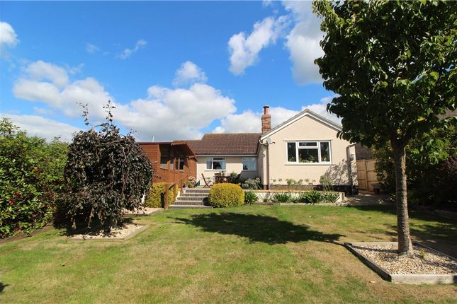 Thumbnail Detached bungalow for sale in Beavor Lane, Axminster, Devon