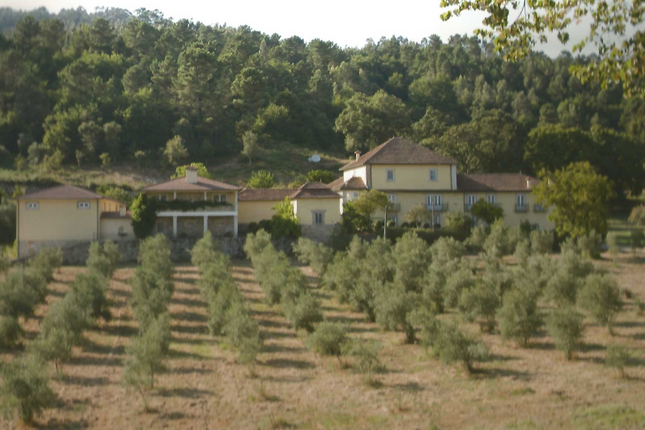 Thumbnail Country house for sale in Barro, Viseu, Portugal