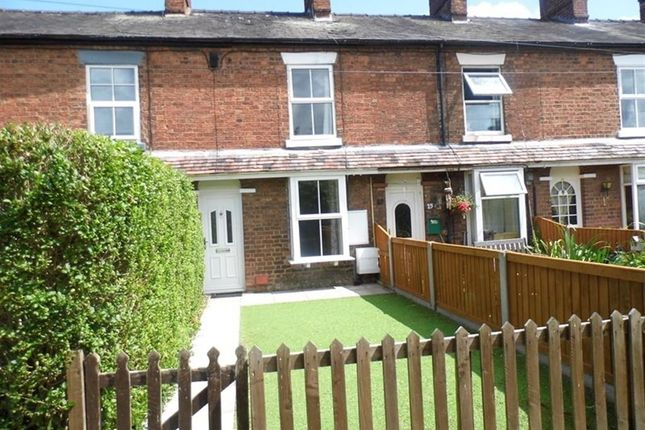Thumbnail Terraced house to rent in Hawthorne Avenue, Nantwich