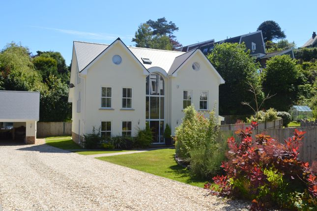 Thumbnail Detached house for sale in Newton, Swansea