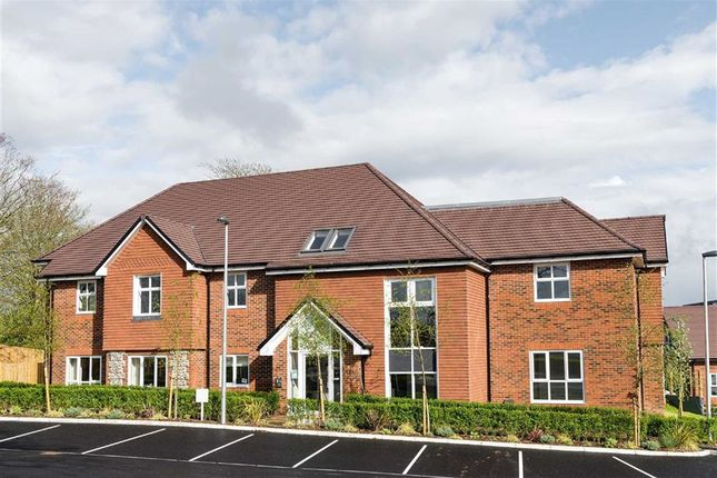 Thumbnail Property for sale in Farnham Road, Liss, Hampshire