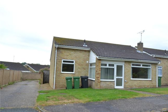 Thumbnail Semi-detached bungalow to rent in 3 The Drive, St Leonards-On-Sea, East Sussex