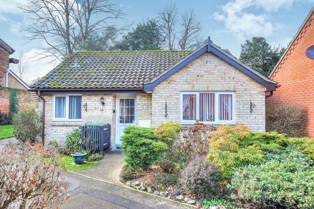 Thumbnail Detached bungalow for sale in Catton Court, Norwich