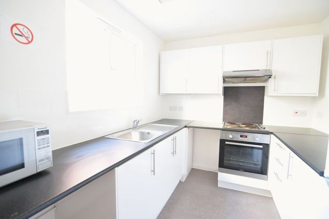 Thumbnail Property to rent in Hollingdean Road, Brighton