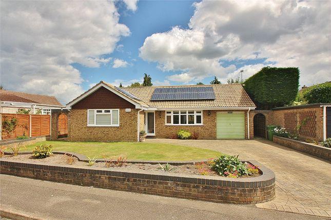Thumbnail Detached bungalow for sale in West End, Surrey