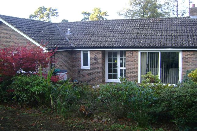 Thumbnail Bungalow to rent in Grovers Gardens, Wood Road, Hindhead