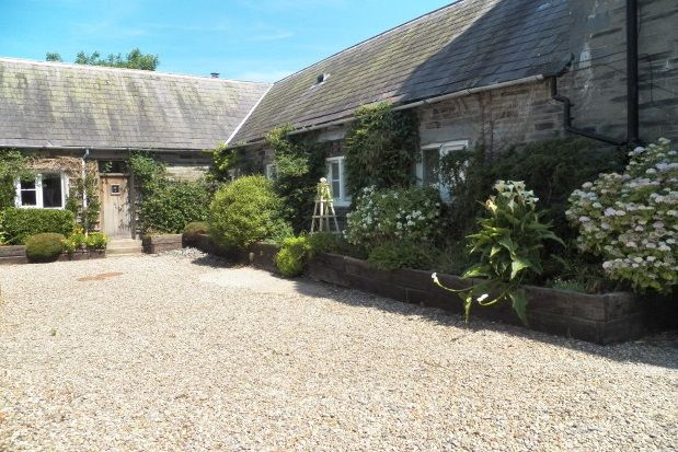 Thumbnail Cottage to rent in Llechryd, Cardigan