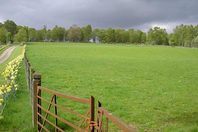Land for sale in East Braeside, Edzell Brechin