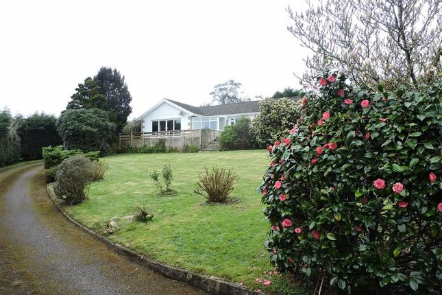 Thumbnail Detached bungalow for sale in Robeston Wathen, Narberth, Pembrokeshire