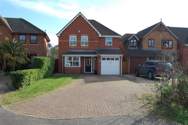 Thumbnail Detached house for sale in Bougainvillea Drive, Abington, Northampton