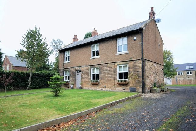 Thumbnail Detached house for sale in Ulgham, Morpeth