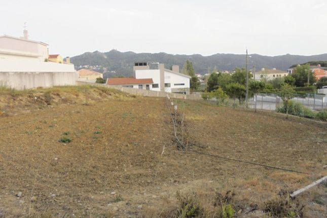 Land for sale in S.Maria E S.Miguel S.Martinho S.Pedro Penaferrim, S.Maria E S.Miguel, S.Martinho, S.Pedro Penaferrim, Sintra