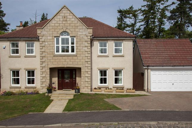 Thumbnail Detached house for sale in Douglas Avenue, Airth, Falkirk