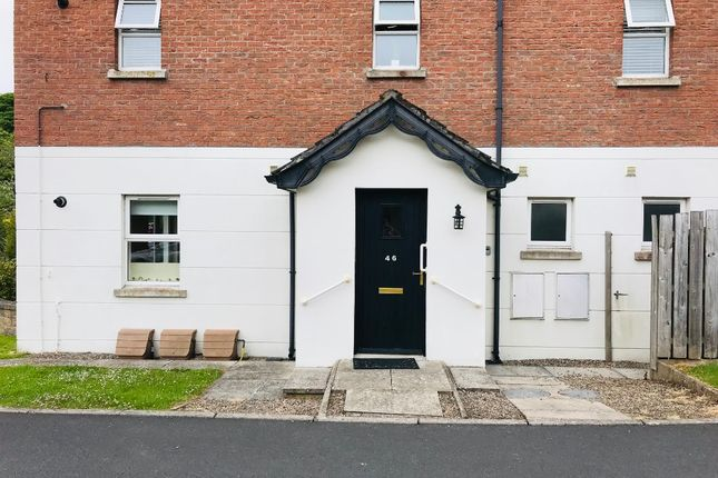 Thumbnail Flat to rent in Mill Green, Doagh