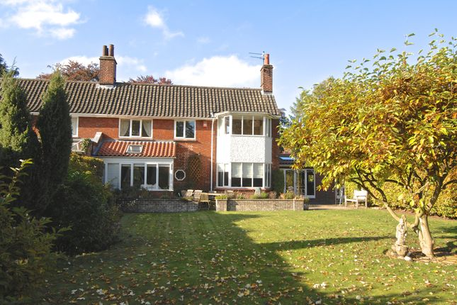 Thumbnail Semi-detached house to rent in Unthank Road, Norwich