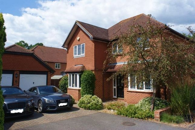 Thumbnail Detached house to rent in Cleopatra Place, Warfield, Bracknell