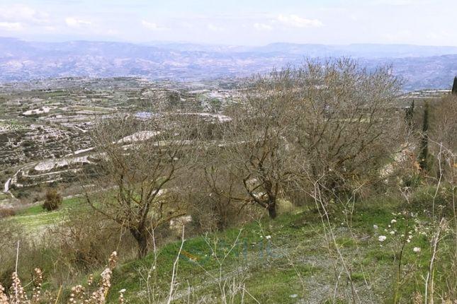 Thumbnail Land for sale in Tsada, Paphos, Cyprus