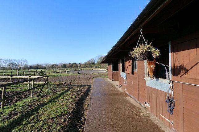 New Homes Tarporley Cheshire