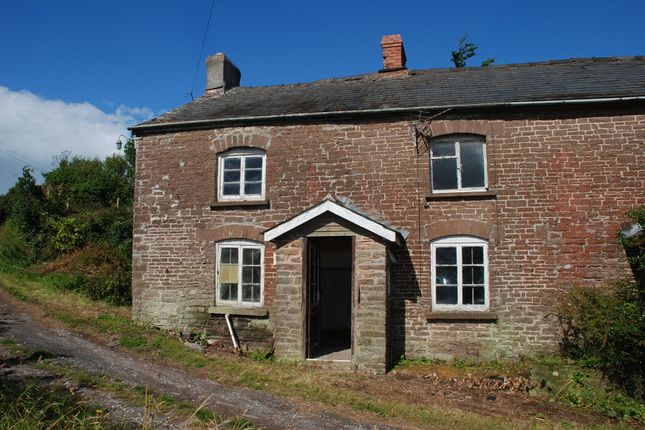 Thumbnail Semi-detached house for sale in Garway Hill, Herefordshire