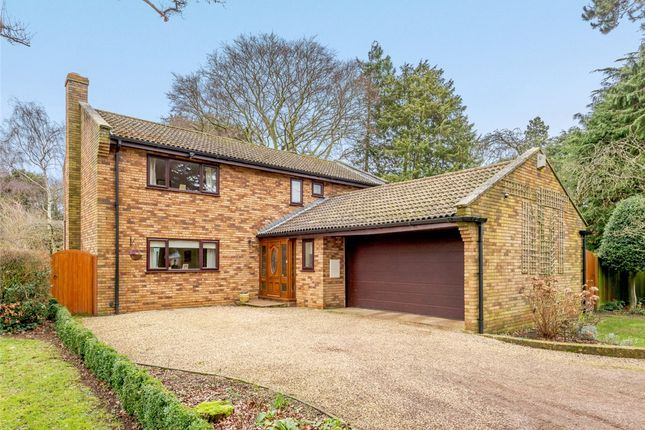 Thumbnail Detached house for sale in The Avenue, Dallington, Northampton, Northamptonshire