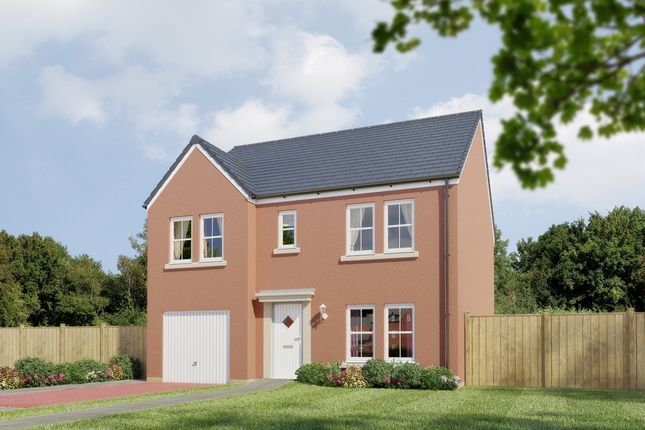 "Thumbnail Detached house for sale in ""The Whitecairns "" at Stable Gardens, Galashiels"