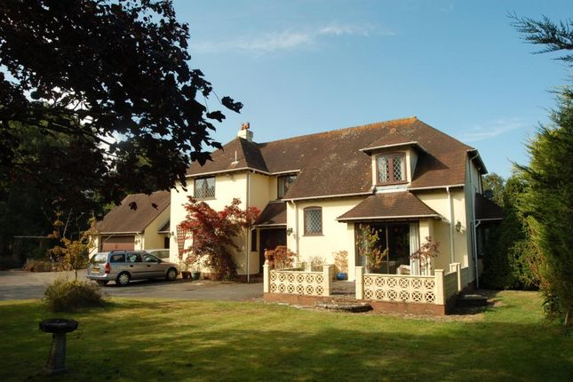 Thumbnail Property for sale in Lower Common Lane, Three Legged Cross, Wimborne
