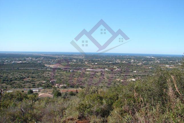Land for sale in Santa Bárbara De Nexe, Santa Bárbara De Nexe, Faro